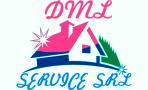 DML Service logo